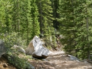 rock_in_the_trail