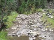 wet_rocks