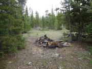 campfire_ring
