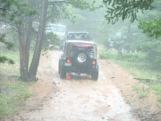 jeeps_in_the_rain