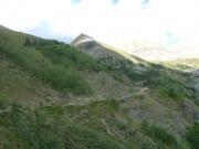 green_trail