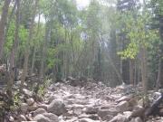 rock_garden_part_3