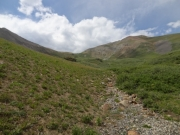 alpine_view