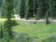 walt_on_the_trail