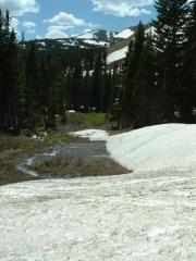 melting_snowbank