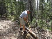 roger_chopping