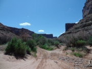 down_into_the_canyon