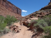 out_of_the_canyon