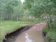 mud_puddle