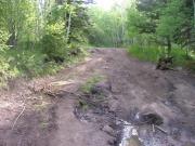 muddy_spot