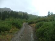 narrow_trail