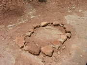 dinosaur_footprint_1
