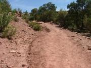 easy_hike