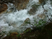 crystal_river_part_3
