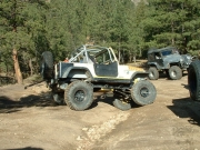 playing_with_the_big_jeeps