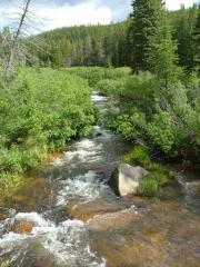 tennessee_creek