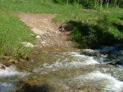 creek_crossing_2