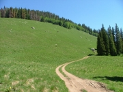 sweeping_hillside