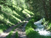trail_next_to_rushing_water