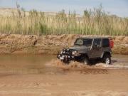 walt_through_the_muddy_creek_part_2