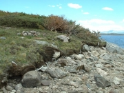 loch_lomond_part_7