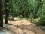 rutted_trail