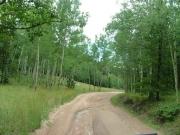 trail_near_rampart_range_road