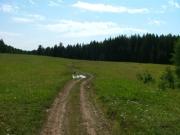 across_a_meadow