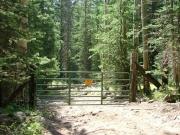 first_gate