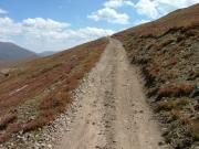 tundra_trail