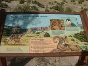 rattlesnake_arches_hike_sign_3