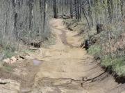 wavy_trail