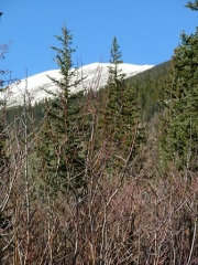 white_mountain_in_blue_sky