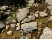 rocks_in_the_water