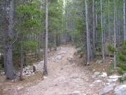 climb_over_rocks