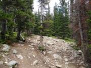 climb_of_bumps