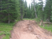 rutted_section