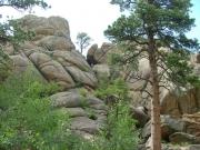 sean_climbing_miller_rock