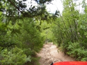 early_trail