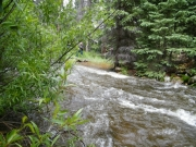 st_vrain_creek