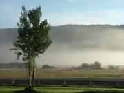 early_morning_fog