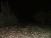dark_trail