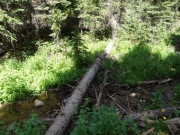 north_clear_creek