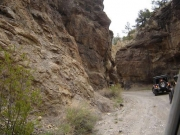 trail_through_the_canyon