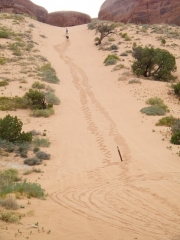 matt_and_jeffrey_up_the_sand_hill