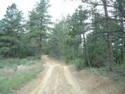 dirt_roads
