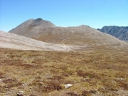 mount_white_in_the_distance