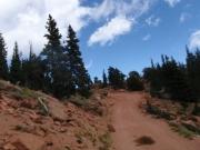 trail_part_4