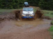 jerry_through_a_puddle