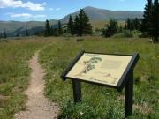 windy_ridge_trail_part_1